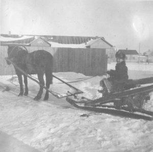 Esko Virtanen hevosmiehenä